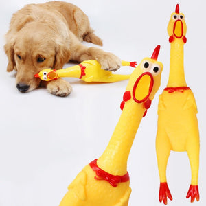 Screaming Chicken Dog Toys
