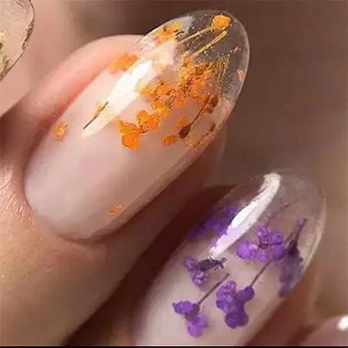 12 Colors Dry Flowers Mini Real Natural Flowers For Nail Art - part 2