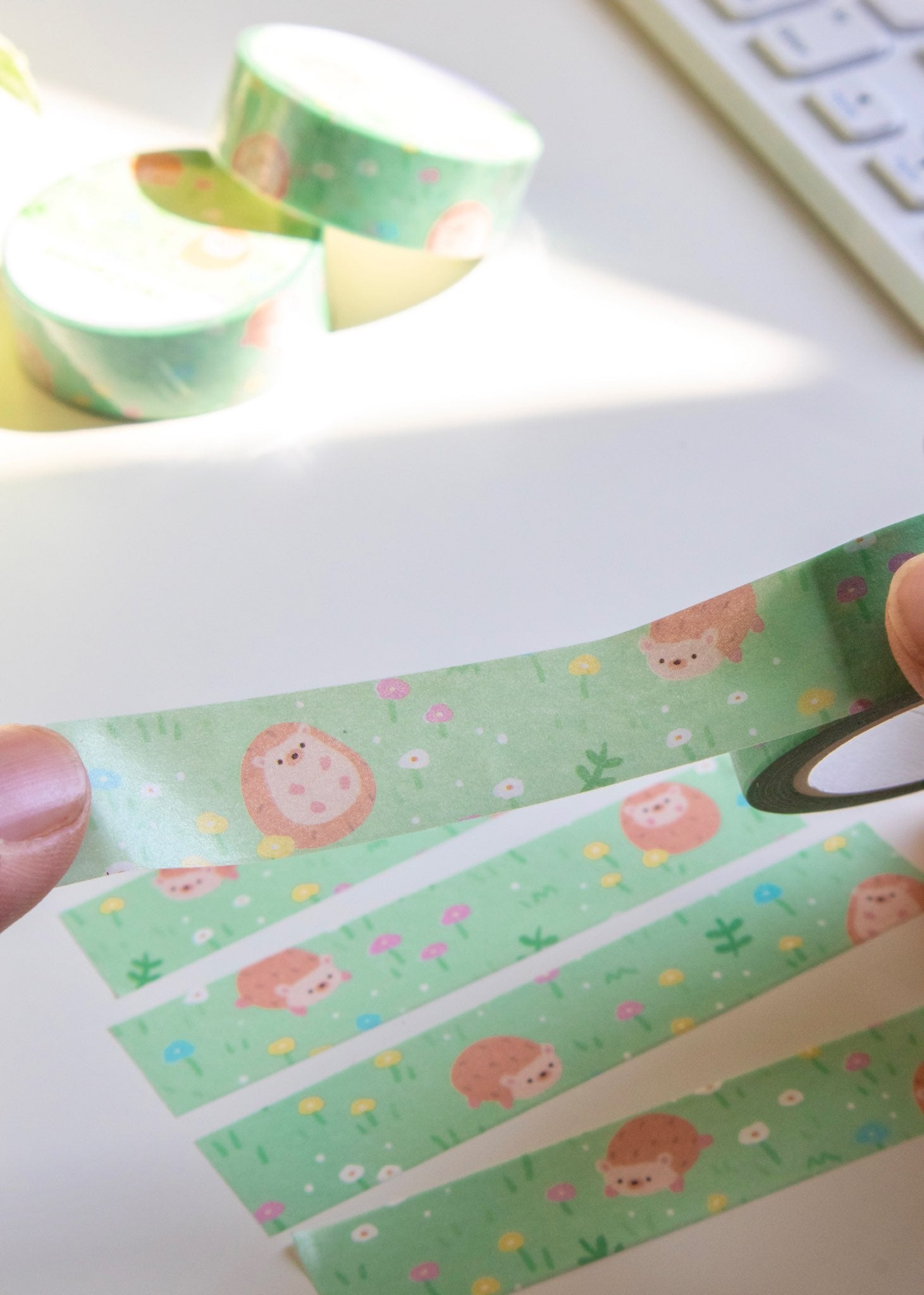 Hedgehog Spring Washi Tape