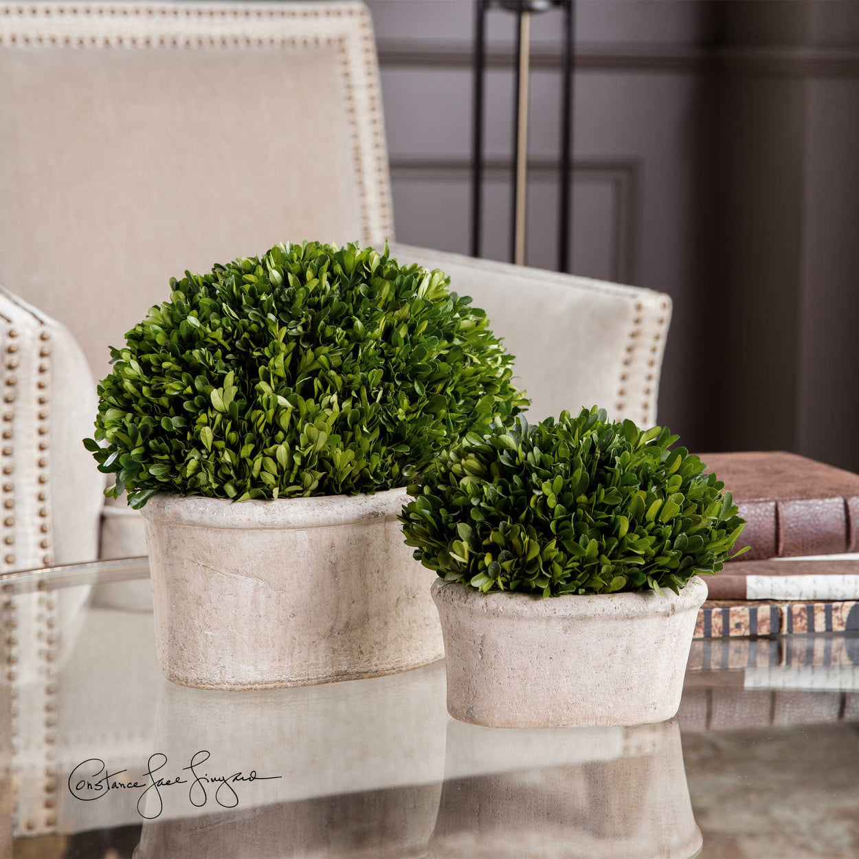 Preserved while freshly picked, natural evergreen foliage looks and feels like living boxwood potted in mossy, stone finished terracotta planters. Sizes: sm- 10x8x6, lg-14x12x8 Indoor use only.