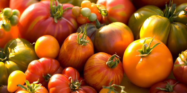 herloom tomatoes come in all shapes and colors