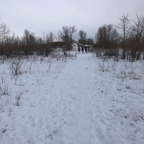Young Men running in Nose Hill Park