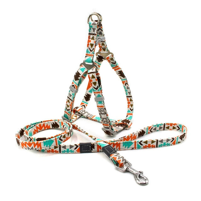 Unique Pattern Harness And Leash