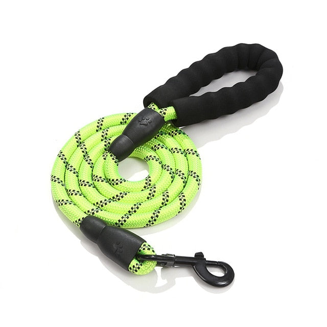 Rope Dog Lead