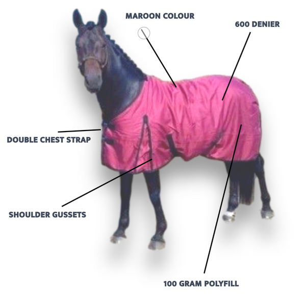 Best lightweight turnout rug