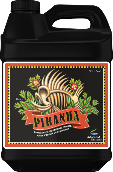Piranha (New) 500ml - Elevated Lighting Company