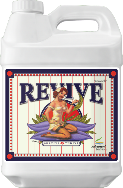 Revive 500mL - Elevated Lighting Company