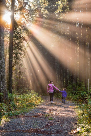 adult and child walking in woods holding hands