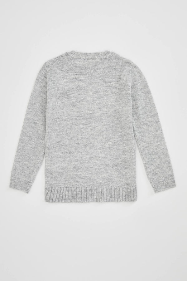 Relax Fit Tricot Pullover - Grey