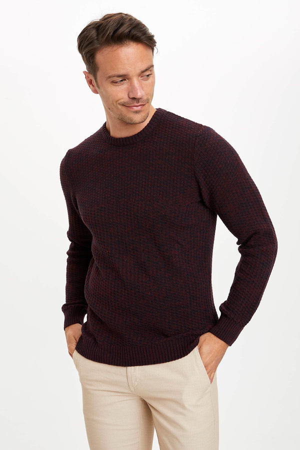 Slim Fit Crew Neck Long Sleeve Tricot Pullover - Bordeaux