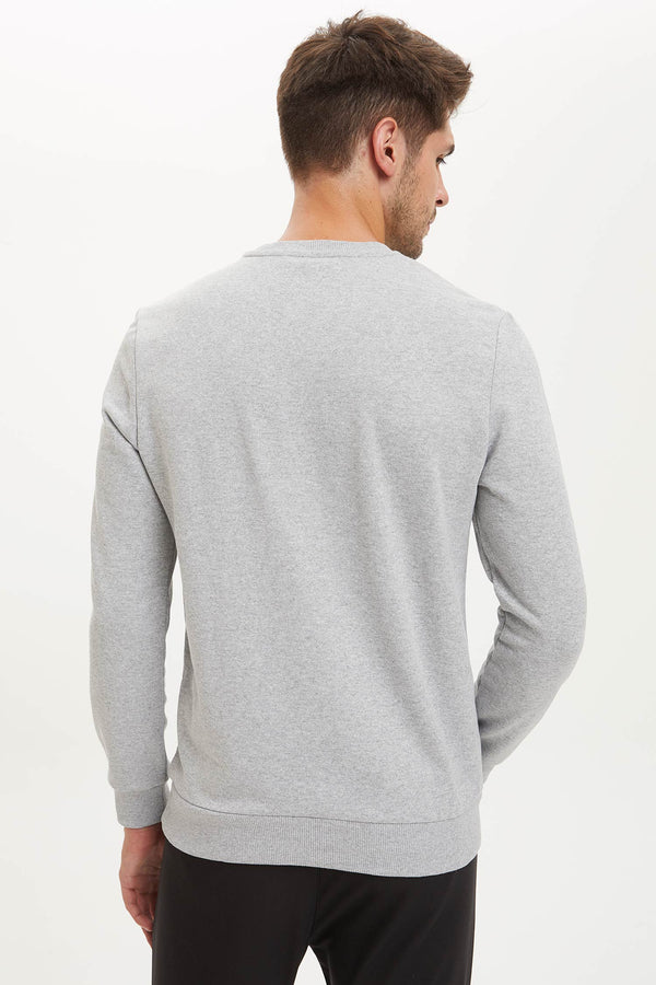 Regular Fit Crew Neck Sweatshirt - Grey