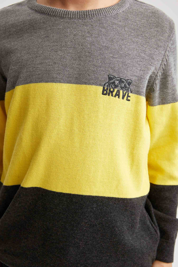 Regular Fit Crew Neck Long Sleeve Tricot Pullover - Yellow