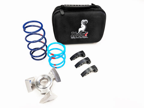 RZR XPT Stage 2 Clutch Kit