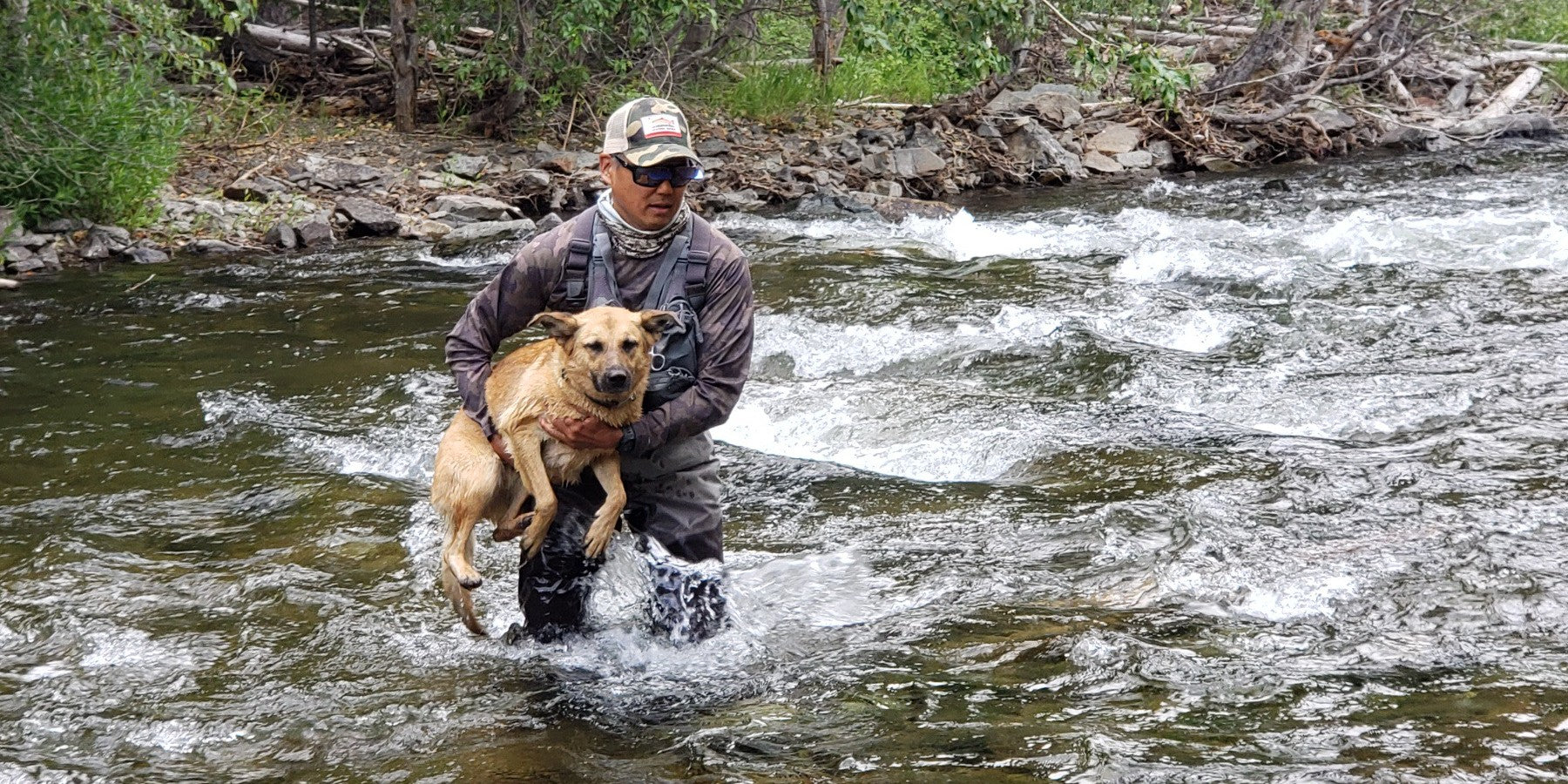Fishing With Your Dog- Is It Worth Your Trouble?