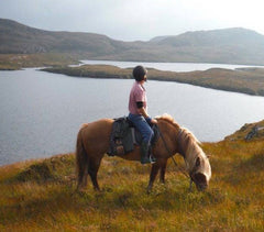 Wild Horses Rare Escapes holidays in Scotland