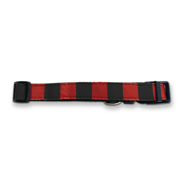 Bournemouth  Dog Collar - Home