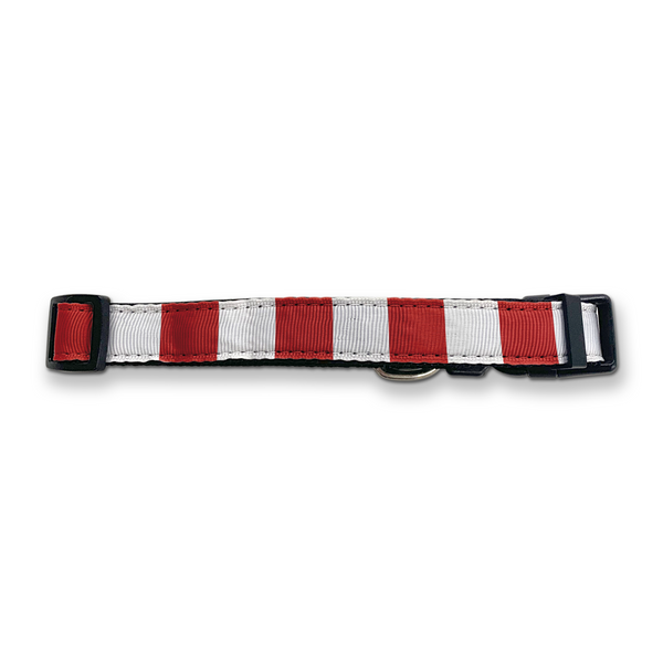 Southampton Dog Collar - Home