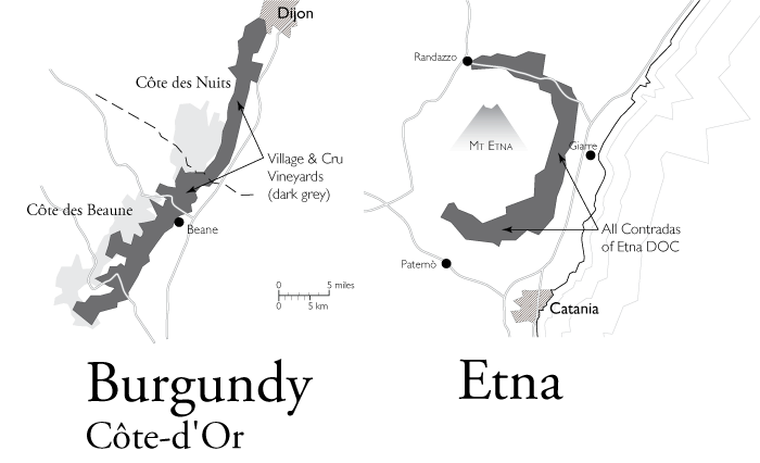 Wine Map of Etna and Burgundy