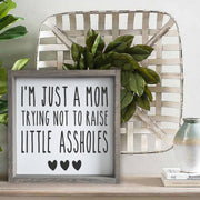 I'm just a Mom trying not to raise little A**holes -  Lines by Lacey -  marketsquare-collective.myshopify.com