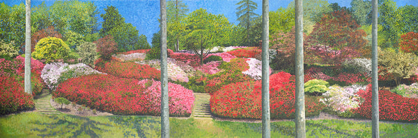 Azaleas Punchbowl limited edition print