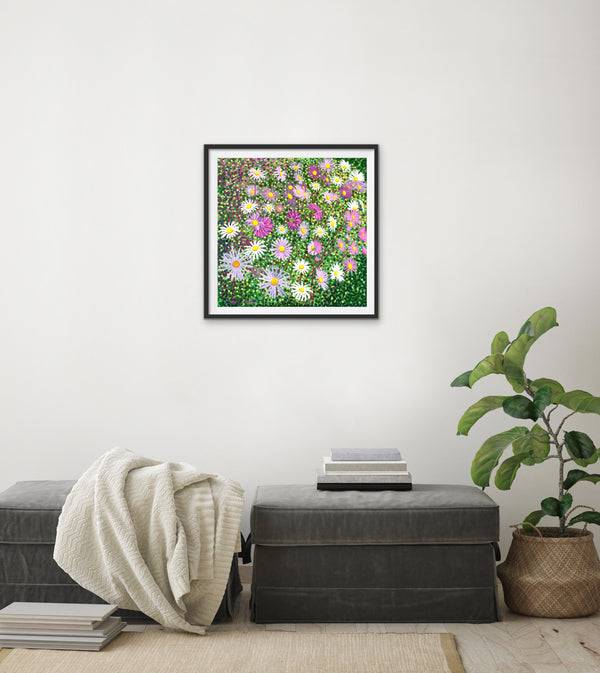 Asters Signed Edition Print