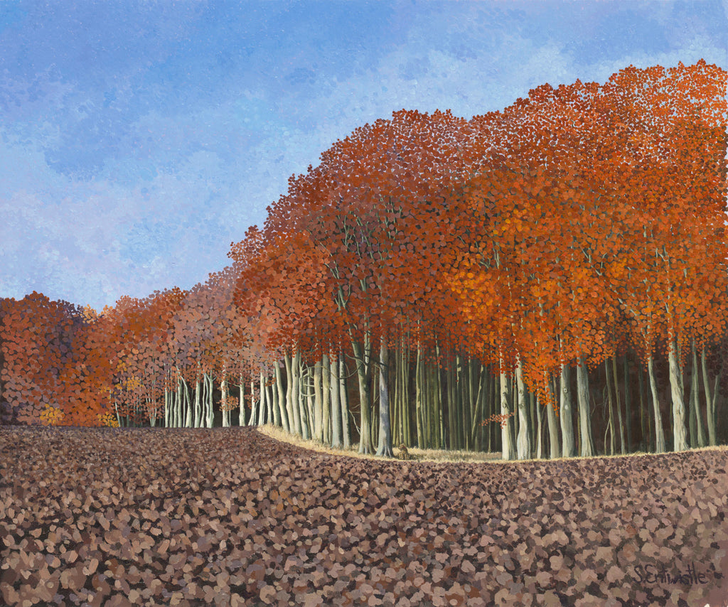 Autumn Beech Limited Edition