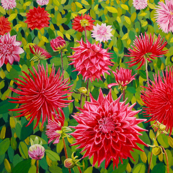 Field of Dahlias card