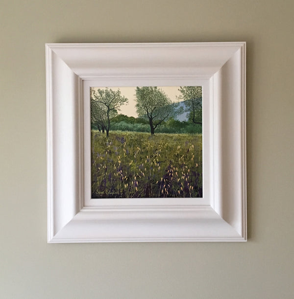 Olive Trees - SOLD