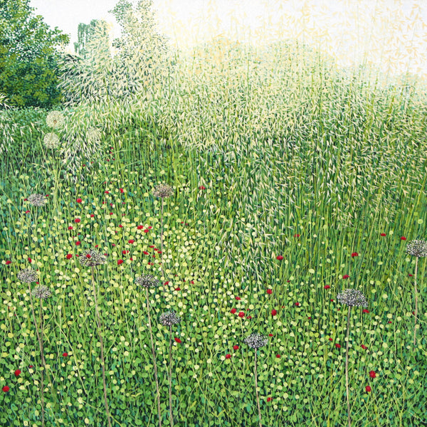 Harlow Carr Grasses card