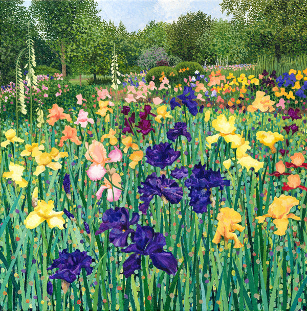 Irises limited edition print