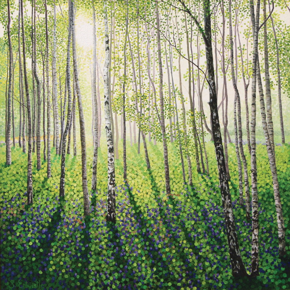 Silver Birch Woods limited edition print