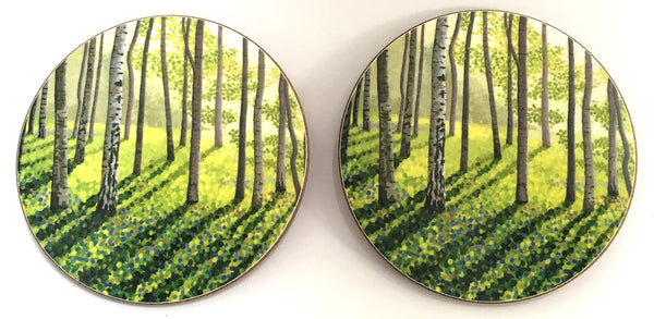 Silver Birch coaster pack of 4 or 6