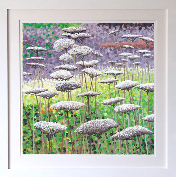 Frost on Seedheads Signed Edition Print