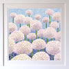 Silver Spring Alliums Signed Edition Print