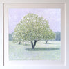Snow Crab Apple Signed Edition Print