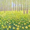 Woodland Daffodils SOLD