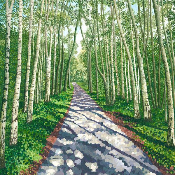 Birch Walk Greetings Card