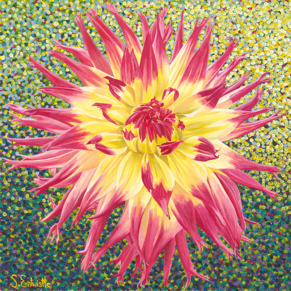 Cactus Dahlia limited edition paper print SALE PRICE