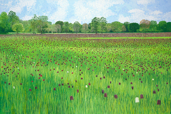 Fritillary Meadow Limited Edition