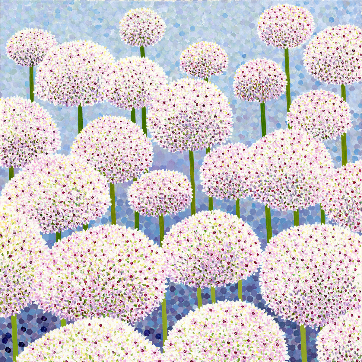 Silver Spring Alliums Card
