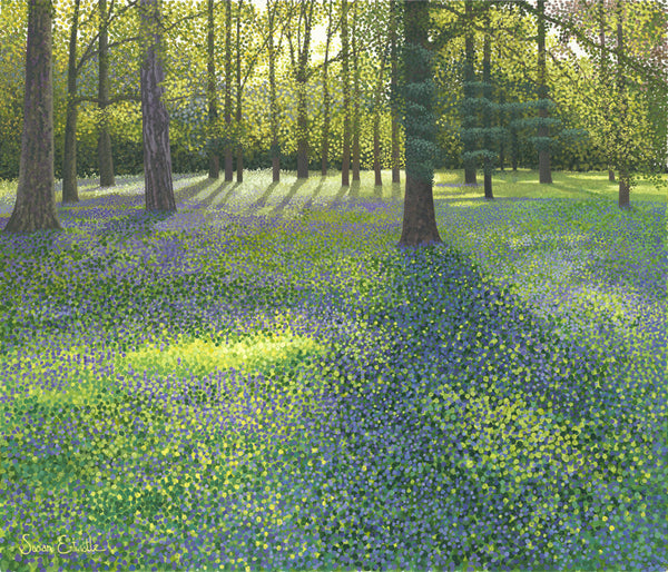 Bluebells at Wisley SOLD