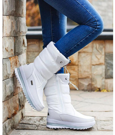 Women's Warm Fur Plush Winter Boots
