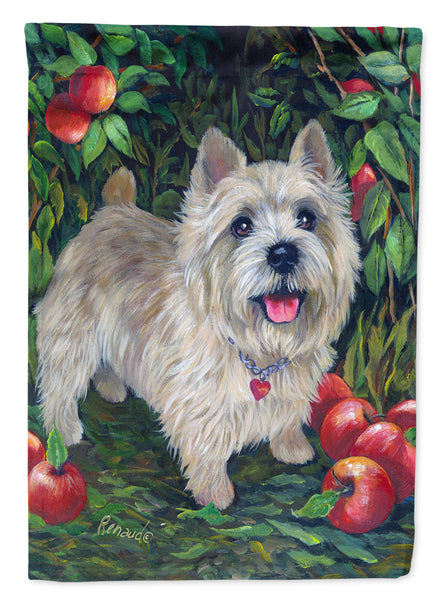 Buy this Norwich Terrier Apple Grove Flag Canvas House Size PPP3116CHF