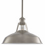 Olivera 12 inch Pendant Light with LED Bulb