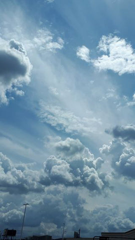Susannah Bee clouds inspiration for painting fine art