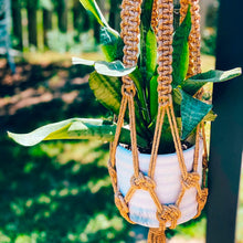Upload picture to gallery, 6 inch concrete pot in a macrame hanging outside with a plant