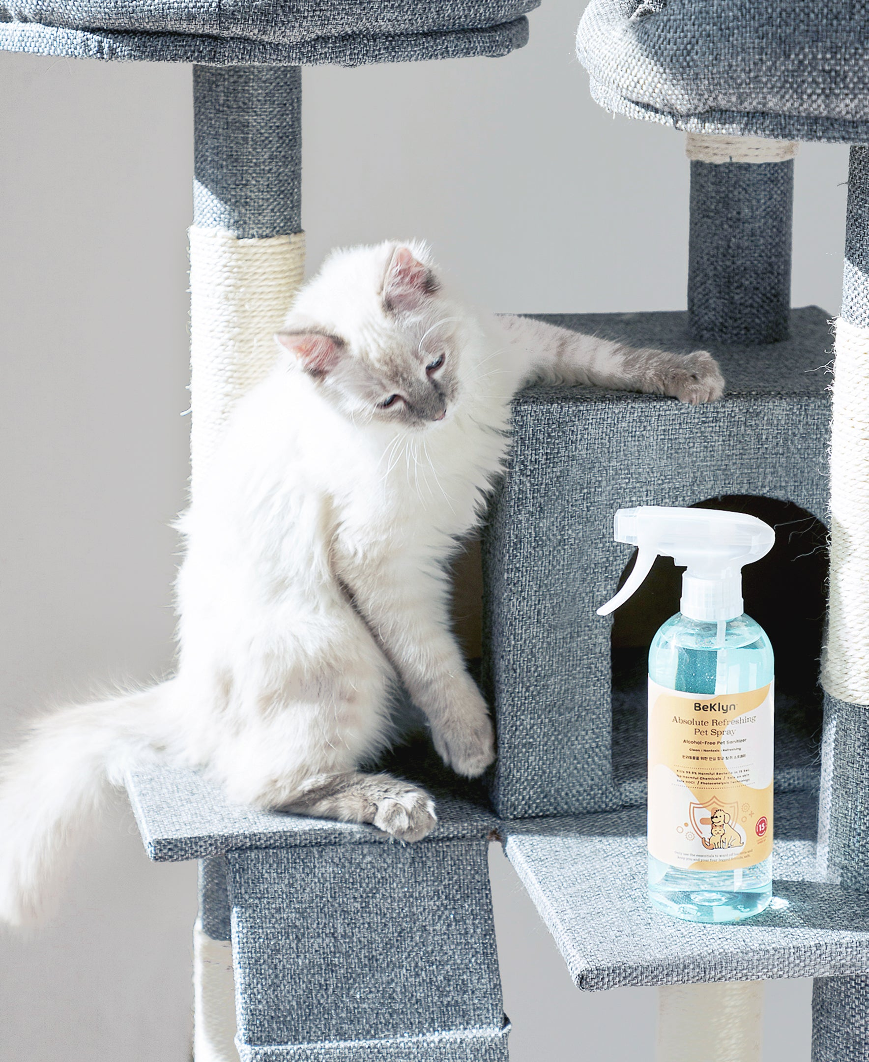 Absolute Purifying Pet Spray