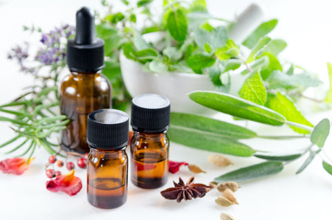 Essential oil bottles with herbs