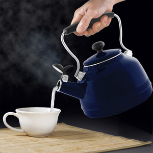 enamel on steel vintage teakettle 1.7 quart capacity quality exterior enamel & interior enamel in action