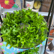 Load image into Gallery viewer, Small Ivy Wreath